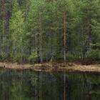 suomussalmi-kainuu-6373