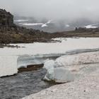 Oerijs op IJsland