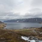 Fjord op IJsland