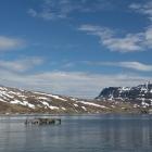 Fjord bij Djúpavík