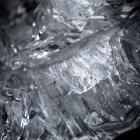 kruiend-ijs-oostvaardersdijk-2457