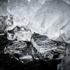 kruiend-ijs-oostvaardersdijk-2462