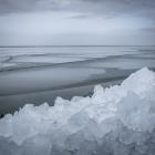 kruiend-ijs-oostvaardersdijk-2474