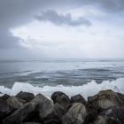 kruiend-ijs-oostvaardersdijk-2485