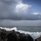 kruiend-ijs-oostvaardersdijk-2505