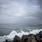 kruiend-ijs-oostvaardersdijk-2521