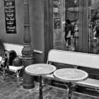 Café op het Place du Tertre