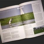 Tijdschrift Vogelbescherming - Weidevogels op Marken