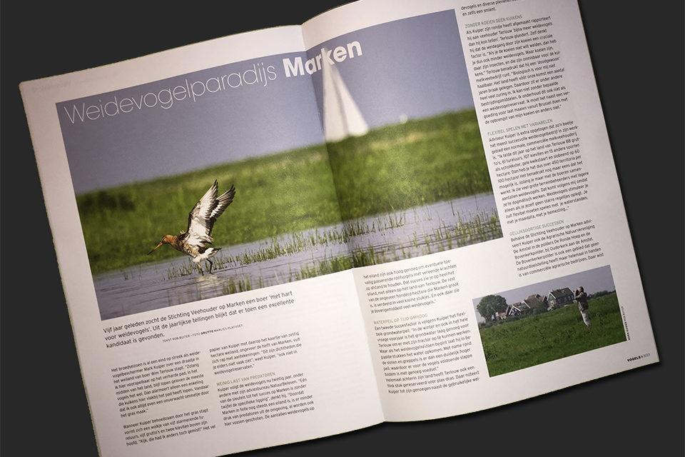 Vogels - Tijdschrift Vogelbescherming