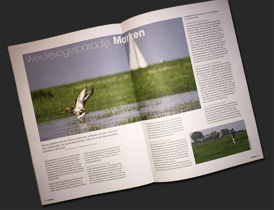 tijdschrift-vogelbescherming.jpg