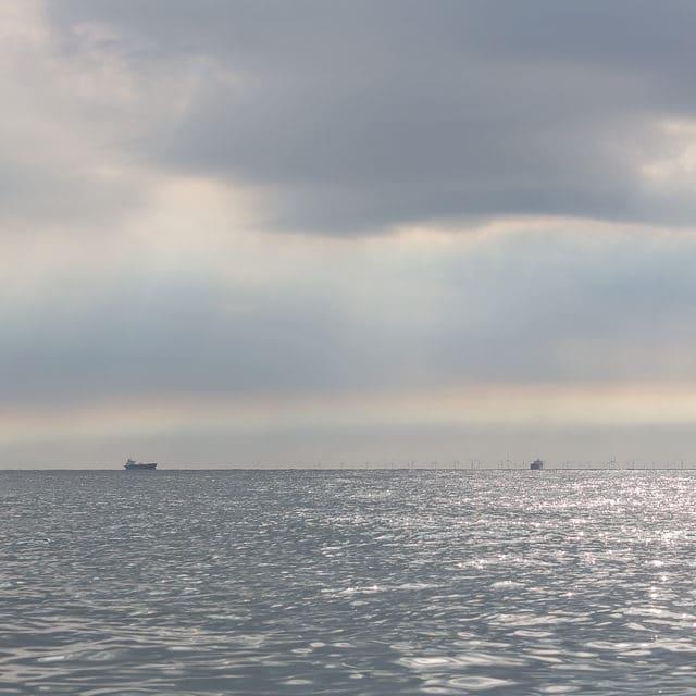 Jan-van-genten op de Noordzee